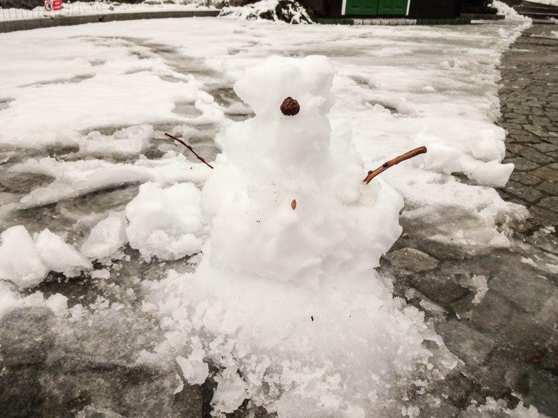 Tentativa de boneco de neve!